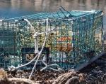 Lobster Trap